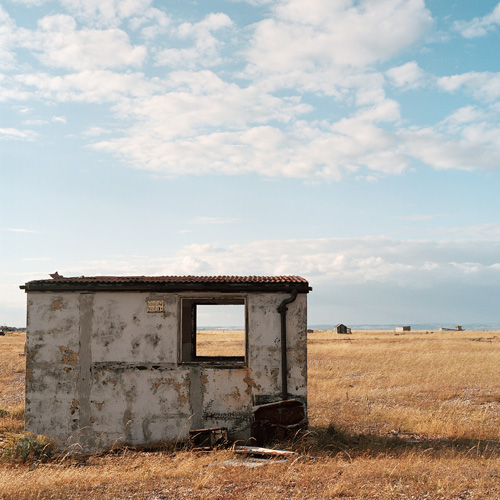 Dungeness 5/6